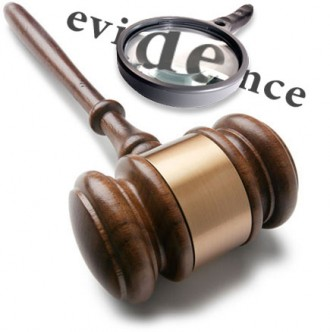 Expert Witness Reports