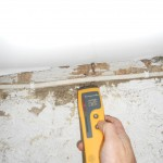 Period Timber Frame Survey